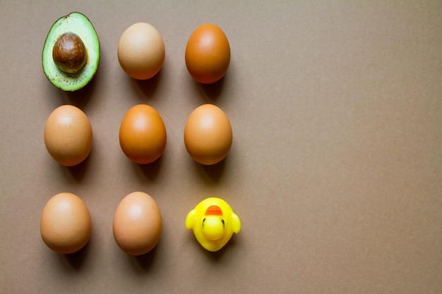 Metade da linha de abacate, alguns ovos de galinha e pato de borracha amarelo