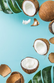 Metades de coco, corte aberto ao meio isolado sobre fundo azul.