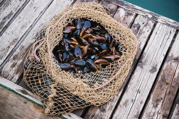Mexilhões em conchas mentem em uma rede de pesca em um cais