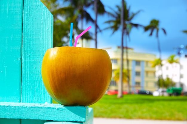 Miami south beach 2 palhas de coco da flórida