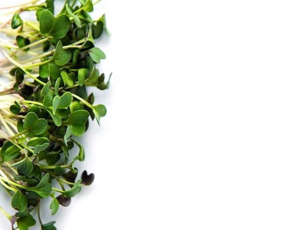 Micro verdes em uma mesa branca. alimentos orgânicos saudáveis e frescos, conceito de serviço de restaurante. vista superior, copie o espaço