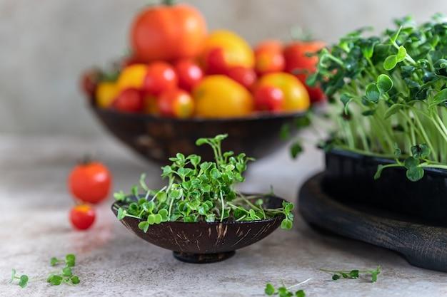 Microgreen de rúcula e diferentes tipos de tomate. conceito de colheita orgânica. estilo de vida saudável.