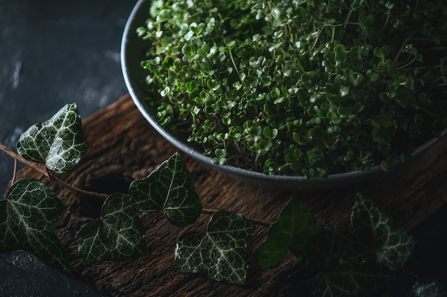 Microgreen em um prato cinza em um rústico de madeira