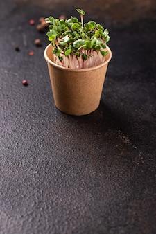 Microgreen fresco rabanete pétalas verdes mudas alimentos crus frescos prontos para comer refeição lanche na mesa