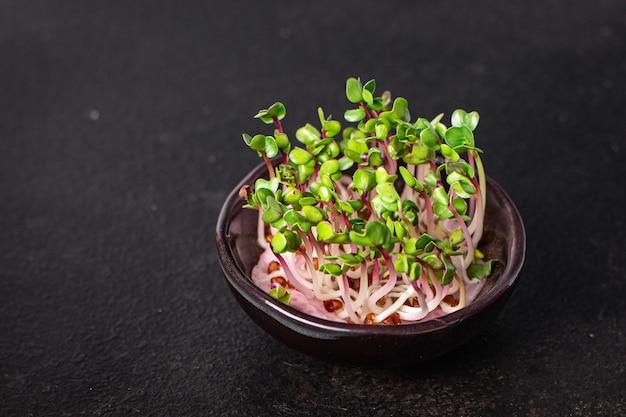 Microgreen rabanete pétalas verdes mudas frescas comida crua porção fresca pronta para comer refeição lanche