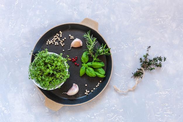Microgreens de agrião salada e ervas picantes, temperos, especiarias.