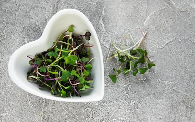 Microgreens de rabanete vermelho em uma mesa de concreto, conceito saudável