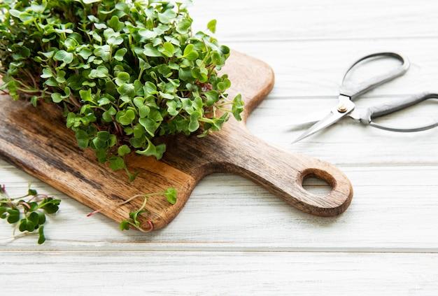 Microgreens de rabanete vermelho em uma tábua de madeira, conceito saudável