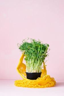Microgreens saudáveis em uma mochila amarela. close-up, brotos de ervilha para uma alimentação saudável