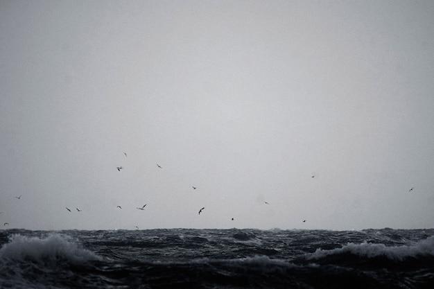 Mídia remixada da natureza do fundo do oceano do céu estrelado