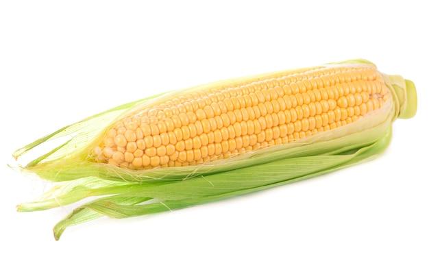 Milho cru com folhas verdes em um fundo branco.