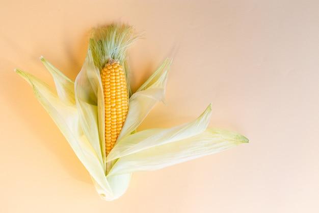 Milho fresco em espiga em papel amarelo. vista do topo.
