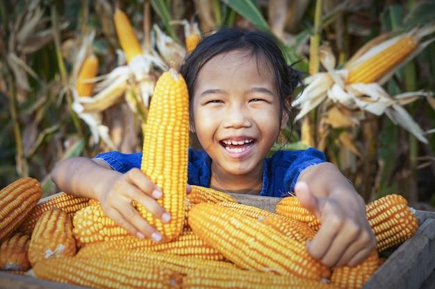 Milho ou milho para transformação em forragens
