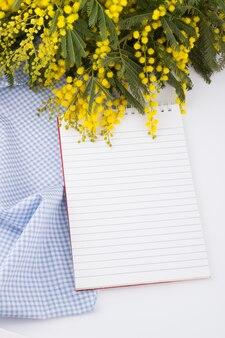 Mimosa e caderno