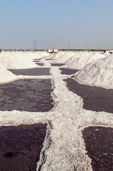Mina de sal no lago sambhar, sambhar, rajastão, índia