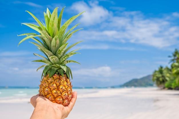 Mini abacaxi fresco na mão da mulher na praia tropical e no fundo do mar. conceito de verão tropical