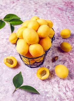 Mini tarte ou torta de damasco rústica caseira com frutas frescas de damasco.