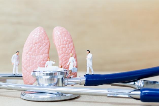 Miniatura médico e enfermeiro, observando e discutindo sobre os pulmões humanos