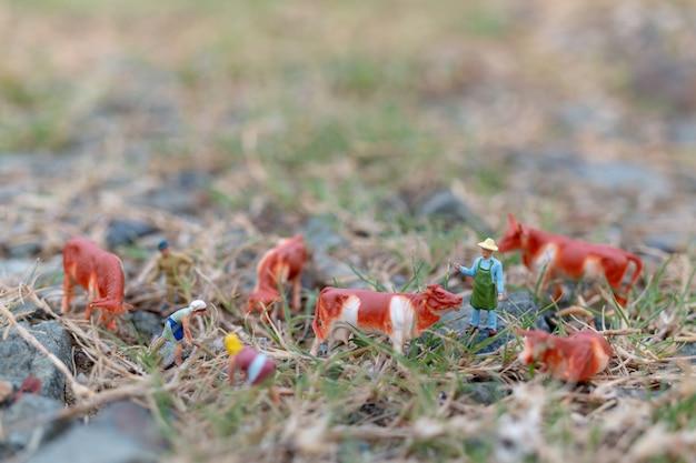 Miniatura pessoas: jardineiro trabalhando no campo