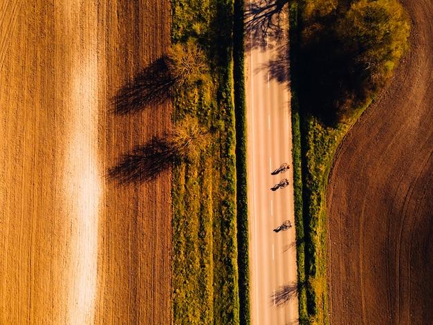 Minimalismo. estrada rural