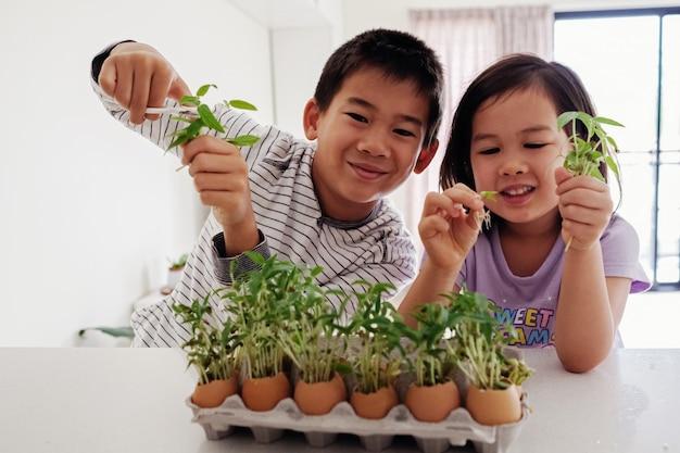 Misto de crianças asiáticas segurando mudas em cascas de ovos