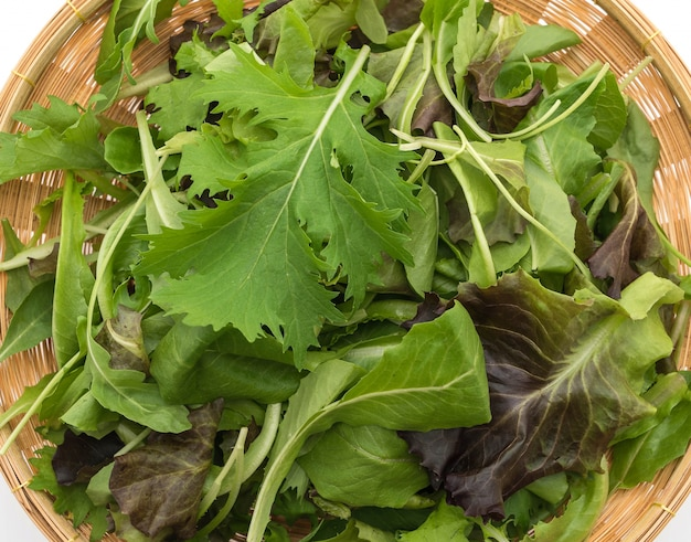 Mistura de salada com alface de rucola, frisee, radicchio e cordeiro