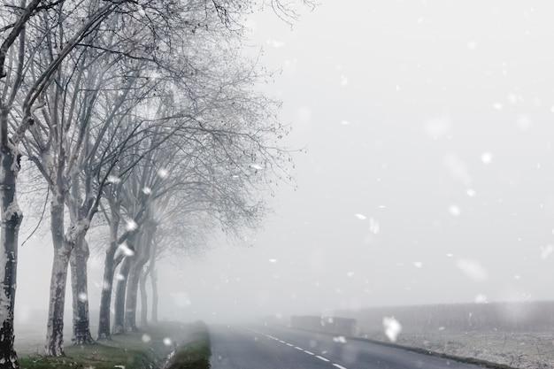 Misty paisagem rural de inverno com estrada do país