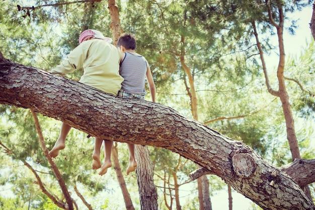 Miúdos sentados juntos na árvore