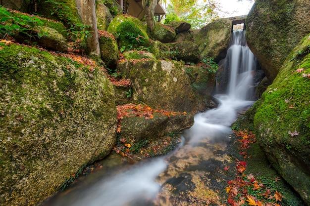 Miyajima, hiroshima, parque momijidani