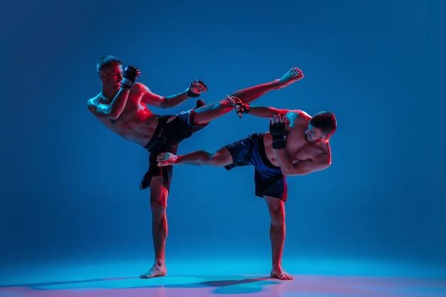 Mma. dois lutadores profissionais socando ou boxeando isolados na parede azul em neon Foto gratuita