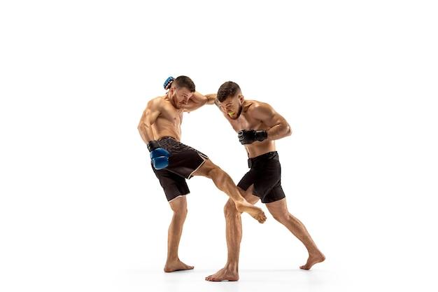 Mma dois lutadores profissionais socos ou boxe isolado no fundo branco do estúdio
