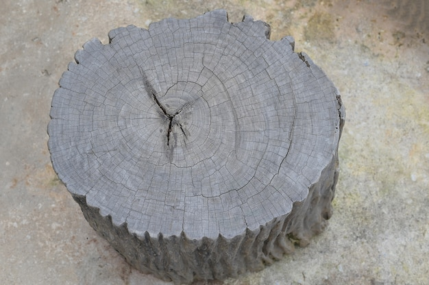 Mobília de jardim de cadeira feita de tronco de árvore de madeira
