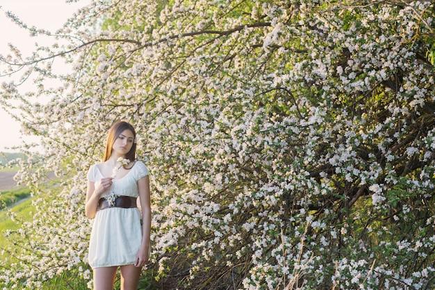 Moça bonita no fundo florescendo macieira