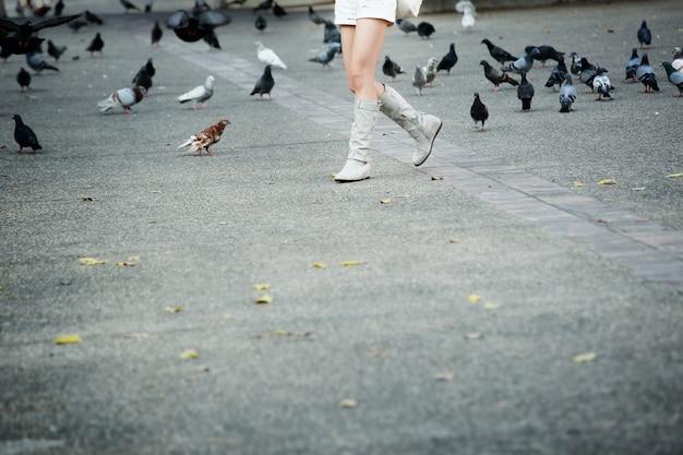 Moça com botas que anda através de um bando de pombos no parque da cidade, com espaço da cópia.