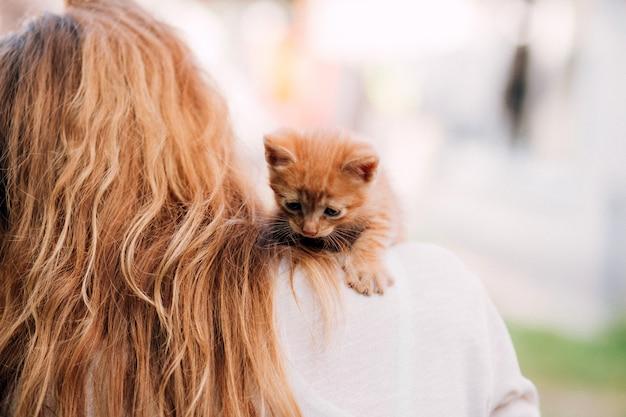 Moça que mantem o gatinho bonito ao ar livre