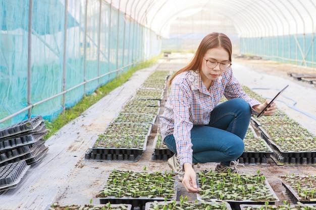 Moça que verifica a qualidade do rebento pela tabuleta. conceito de agricultura e produção de alimentos.