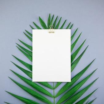 Mockup white white postcard folhas de palmeira tropical