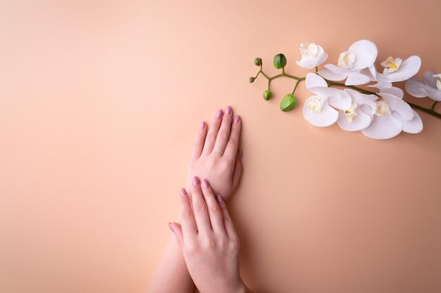 Moda, mãos femininas com manicure, unhas, flores de orquídea brancas, pele saudável e cosméticos naturais. vista superior contrastando contra um fundo pulverulento.