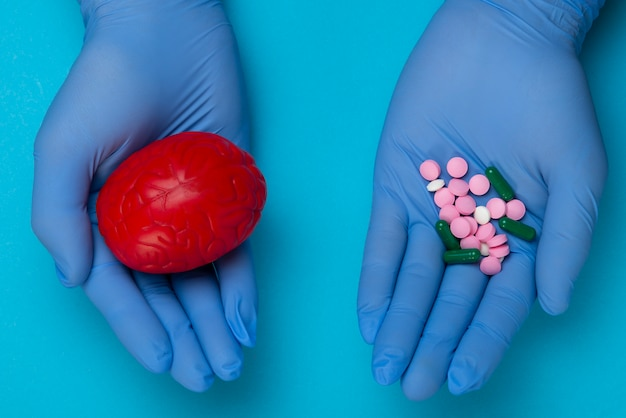 Modelo anatômico 3d do cérebro e rosa e azul pílulas na palma da mão