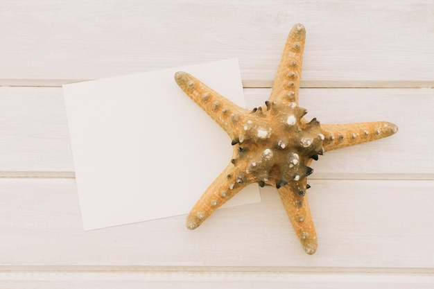 Modelo com estrela do mar