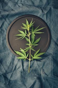 Modelo com folhas de maconha na mesa escura para produtos de cannabis, óleo cbd