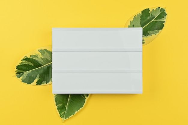 Modelo com placa de humor branco com folhas naturais de ficus