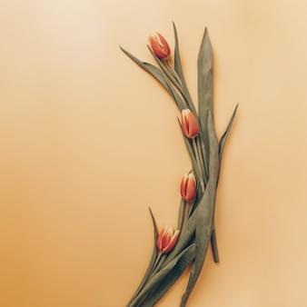 Modelo com um buquê arqueado de tulipas vermelhas em um fundo laranja. vista plana leiga, superior com copyspace.
