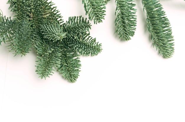 Modelo de cartão de ano novo. ramos de pinheiro de natal com lugar para seu texto em um fundo branco isolado