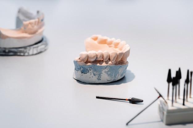 Modelo de dentes confeccionados em gesso da mandíbula para técnicos de prótese dentária