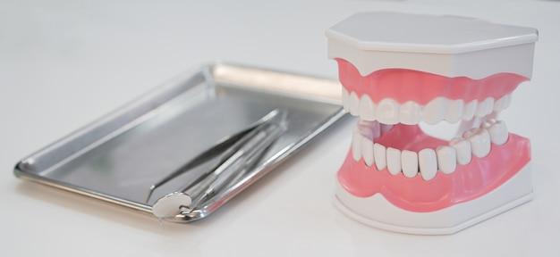 Modelo de dentes dentadura com ferramenta de equipamentos odontológicos