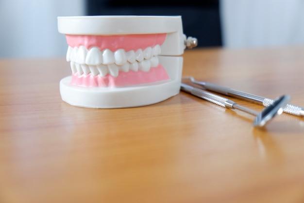 Modelo de dentes na mesa do dentista