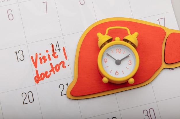 Modelo de fígado no calendário com marca. conceito de saúde.