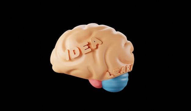 Modelo de ideia de cérebro humano