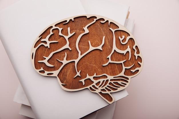 Modelo de madeira de cérebro e livros na mesa.
